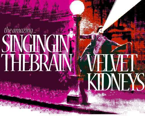KMPLX002 - Singing In The Brain - Velvet Kidneys